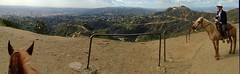 Hollywood Ride Panorama (Nikki M-F) Tags: california usa animals landscape losangeles ride hills hollywood pan griffithobservatory rohan landscapecountryside