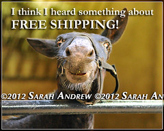 FREE shipping for a limited time! (Rock and Racehorses) Tags: cute photo calendar lol mule freeshipping sarahandrew sarahkandrew horsesandhope