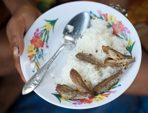 Rice and fish, Phnom Penh, Cambodia. Photo by Patrick Dugan, 2008.