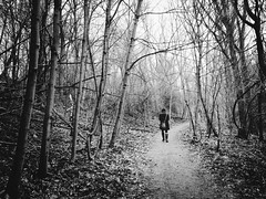 Walking through the Gruwalde Forest (MyLifesATrip) Tags: berlin blackwhite image empty richness app teufelsberg mobilephotography