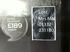Lost Mrs Mix (new folder) Tags: sign festival moblog lost typography format derby lostcat iphone formatfestival iphone4 format13 189 mrsmix