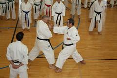 Estgio Internacional 2013 (amicalekarate) Tags: dan portugal martial arts karate joaquin e fabricio sensei gonalves 5 estgio alcanena amicale rokudan castellani