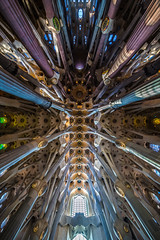 Sagrada Familia (Daniel Borg) Tags: barcelona camera city windows lines architecture buildings other high spain shadows cross cathedral pov basil