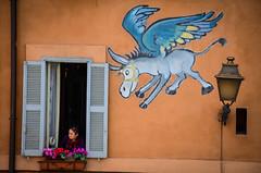 winged donkey