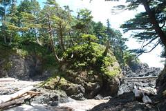 Canada Ouest - Ile de Vancouver (Philippe Maraud) Tags: canadaouest canada iledevancouver pacificrim ucluelet tofino nationalpark