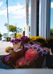 Afternoon Blooms (db____s) Tags: flowers afternoon cafe bunch bloom brisbane outside nikon australia sunny colour love