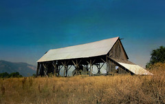 Barn with a view (Karen McQuilkin) Tags: barnwithaview edenutah rural wooden landscape west karenmcquilkin