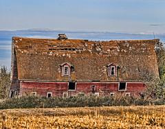 Old Red Has Seen Better Days (edmason88) Tags: oldred oldbarn sagging falling tamron150600 strathconacounty sliders sunday