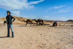 Camels for hire (gpi90) Tags: boy camels morroco atlas