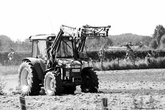 Working the field (Rick & Bart) Tags: domeinnieuwenhoven sinttruiden belgie belgique canon eos70d rickvink rickbart transport tractor work field gününeniyisi thebestofday