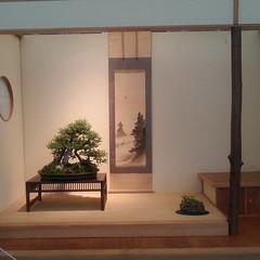 #tokonoma #Japanese traditions