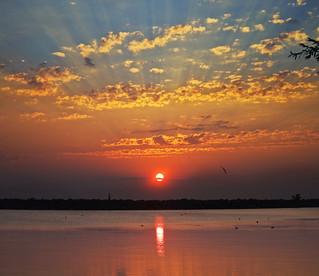 Jordan Harbor Sunrise