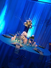 Blue Lighting - Drapery Lighting - Floral Pinspotting - Tea Lights/Candles