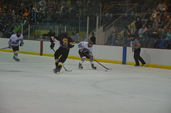 Missouri State Ice Bears - Springfield vs. Loyola University - Chicago (Adventurer Dustin Holmes) Tags: sports hockey sport icehockey msu div2 loyolauniversity collegehockey haca eishockey icebears hoki missouristateuniversity divisionii division2 曲棍球 divii ホッケー hokej 2013 хоккей hokejs hóquei jégkorong hochei hokkí 하키 ჰოკეი хокей mediacomicepark ledoritulys hoci 02022013 020213 february22013 χόκεϊ хокеј