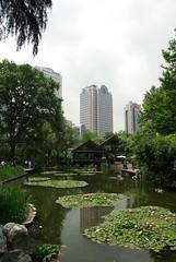 Jing'an Park (Alexander Marc Eckert) Tags: china park shanghai jingan prc   chine jiangsu  peoplesrepublicofchina puxi jinganpark  jiangsuprovince    jingandistrict       volksrepublikchina huangpuwestbank