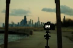 Blur   (EXPLORE 02/21/13) (benchorizo) Tags: camera chicago blur skyline nikon cityscape dof bokeh tones downtownchicago chicagoskyline lightroom chicagoist banias montrosepark d7000 benchorizo romeobanias