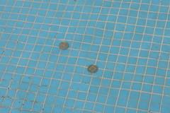 משמעות המים במאגיה (zeevveez) Tags: water canon spring coin magic christian well fairies pagan wishing zeevveez