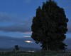 Before Dawn (SolanoSnapper) Tags: moon dawn moonset wah storypeople wearehere solanocounty