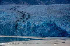 Dawes Glacier at the Head of Endicott Arm Fjord, Alaska (zellerw0) Tags: fjord dawes ship insidepassage tongass glacier family vacation nationalforest alaska endicottarm