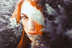 Angela II (PetterZenrod) Tags: angela girl cute sweet portrait portraitphotography petterzenrod red redhead ginger eye look sigma 30mm f14 airelibre profundidaddecampo