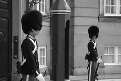 Auto control - Denmark (Flakadiablo) Tags: queen soldier soldat reine garde danemark danmark denmark copenhagen copenague 40d canon eos