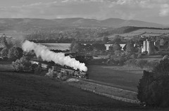 Marches Princess Monochrome (Martin Creese) Tags: 6201 princesselizabeth welsh marches stokesay craven arms nikon d90 september