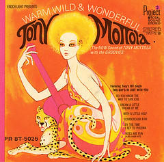 1968 - Warm, Wild & Wonderful (sixtyseventies) Tags: vinyl record sleeve cover art artwork lp jacket design platten platte schallplatte schallplatten plattencover 1960s 1970s 60s 70s sixties seventies
