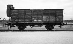 20130916Auswitch II Birkenau02 (J.A.B.1985) Tags: auswitch poland polonia iiww worldwar iigm guerramundial holocaust holocausto soah