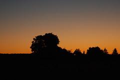 petit matin (domimartin) Tags: lever soleil matin aout dordogne