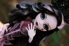 IMG_9858 (Cleo6666) Tags: draculaura collector draculaurasweet1600collectordoll monster high monsterhigh mattel deluxe deluxeedition
