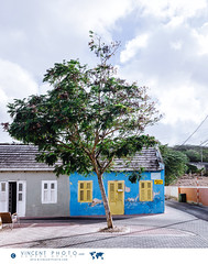 Little house in the Scharloo District in Willemstad, Curacao. (Vincent Demers - vincentphoto.com) Tags: abcislands amriquedusud antilles antillesnerlandaises architecture building btiment carabes caribbean caribbeanisland city colorful color colourful curacao curaao destinationdevoyage destinationtouristique dutchcaribbean dutchcaribbeanisland home house iledescarabes kingdomofthenetherlands maison netherlandsantilles photodevoyage photographiedevoyage quartierscharloo royaumedespaysbas scharloo scharloodistrict sitedupatrimoinemondialdelunesco southamerica tourism tourisme touristattraction travel traveldestination travellocation travelphoto travelphotography trip unescoworldheritagesite unesco urbain urban ville voyage willemstad siteunesco sitetouristique cw