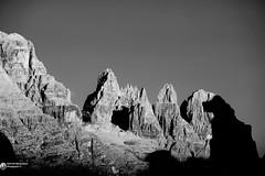 DSC03392bncrw (Abboretti Massimiliano-Mountain,Street and Nature ) Tags: abboretti alps alpi dolomiti dolomites sonya7r2 sony madonnadicampiglio valrendena brenta moon anseladams
