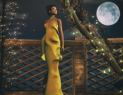 Jealous of the Moon (Novaleigh Freng - Taking Clients!) Tags: loovus argrace sl second life mesh gown yellow night moon outside looking brunette avatar formal lelutka photoshop spot on genre alterego slink physique stella meshclothing blogger photography
