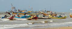 Fishing Boats, Bancar Indonesia (AdamCohn) Tags: adamcohn indonesia tuban tubanregency boat fishing fishingboat kapal kapalnelayan ship shipsboats wwwadamcohncom bancar