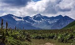 Jvari Pass, Georgian Military Road, Great Caucasus , Georgia (Ula P) Tags: caucasus jvaripass georgia georgianmilitaryroad mountains snow sony