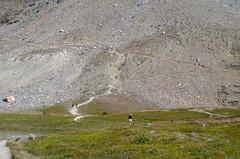 DSC_6419 (AmitShah) Tags: banff canada nationalpark