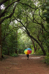 Matheran-5132 (Satish Chelluri) Tags: satishchelluri satishchelluriphotography matheran maharastra umbrella mansoon