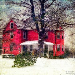 Down the Street (DaraDPhotography) Tags: winter snow building tree home textures textured sincity magicunicornverybest lenabemannatextures wwwdaradphotographycom galleryoffantasticshots pixeldustphotoart imageexcellence bestevergoldenartists pdpacoolbreeze texturemerrychristmas pdpaluxuriouscanvas