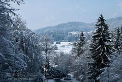 V Utik (gregork.) Tags: blue houses winter sky panorama house snow mountains tree forest landscape hill slovenia slovenija zima could gora februar selo sneg vodice landsscape hrib panoramio gozd drevo 2013 hladno hiša rašica