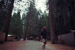 Yosemite (Emmanuel Rosario) Tags: life road wild urban man hot sexy beautiful tattoo youth america 35mm vintage beard real photography rebel cool nikon alone hand natural amor exploring awesome hipster young free lifestyle retro adventure vida indie unusual lust emotions 20s locura on inthemoment newyorkphotographer emmanuelrosario