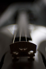 Bridge - I (Skink74) Tags: bridge music 20d wooden dof bokeh canoneos20d violin instrument strings nikkor35mm114ai