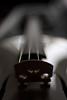 Bridge - I (Skink74) Tags: bridge music 20d wooden dof bokeh canoneos20d violin instrument strings nikkor35mm114ai