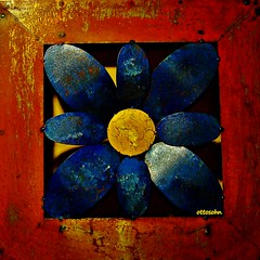 Primavera (ottosohn) Tags: blue red stilllife flower rot art primavera yellow germany square stillleben spring colours blossom kunst gelb frame blau blume lente blte metall printemps farbig bunt rahmen tavasz springtime wandbild lenz frhling artsandcrafts bahar homestudio kunstschmiedearbeit smithery appliedarts kunstgewerbe pictureonthewall riveted genietet trynka ottosohn mygearandme mygearandmepremium vigilantphotographersunite vpu2 vpu3 vpu4 vpu5 vpu6 vpu7 vpu8