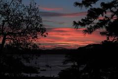 Watsons Bay sunset (Graeme Gillmer) Tags: bridge sunset bay harbour sydney australia watsons