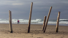 Growing old together. (marbarsal) Tags: sea people beach rocks purple poles cannonbeach