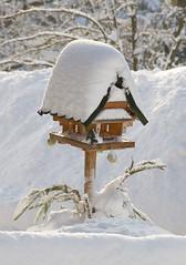 Bird feeder (maxunterwegs) Tags: schnee winter snow germany deutschland hiver nieve saxony birdfeeder sachsen neve alemania invierno neige inverno alemanha saxe sajonia neustadtinsachsen vogelhuschen alemagne saxnia mangeoiredoiseaux
