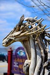 Drift Wood Beast Horse (blueboy6601) Tags: sculpture horse artwork driftwood nikkor afs2470mmf28ged nikond800 aperture3 solomonsislandmayland