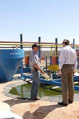 "Tom Tours the ""Jalgae"" Plant (Senator Tom Udall) Tags: energy environment algae jal renewableenergy biofuels oilgas udall tomudall leacounty jalgae"