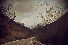 Las texturitas molan (laororo) Tags: road snow textures pirineos