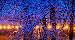 yos_snow_v2_02 (Mike Filippoff) Tags: trees snow abstract night lights yosemite beaches glowing curryvillage